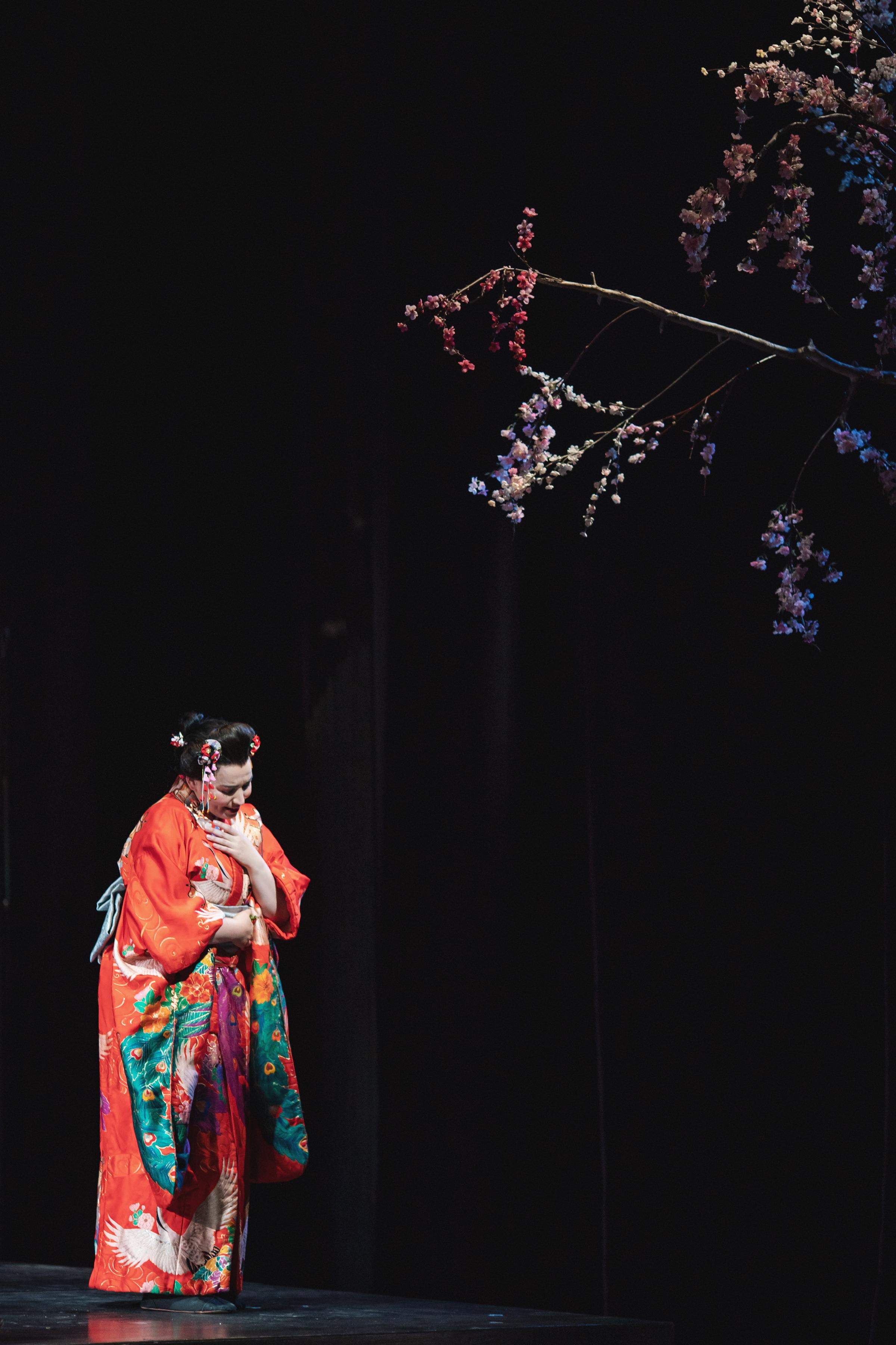 Madama Butterfly - CCO - Amanda Tipton Photography