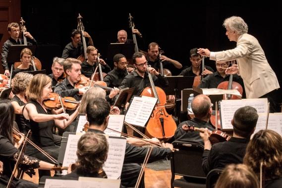 CMF Orchestra 2019-3